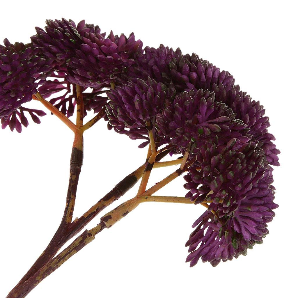 Künstliche Miniatur Sukkulenten Pflanzen Kaktus Echeveria Blume Wohnkultur Neu