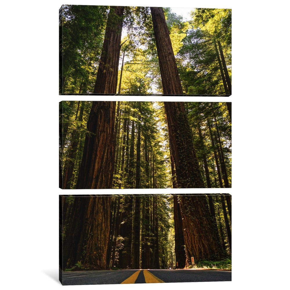 iCanvasART 3 Piece Red Wood Heights Canvas Print by Eric Schech 60 x 40//1.5 Deep
