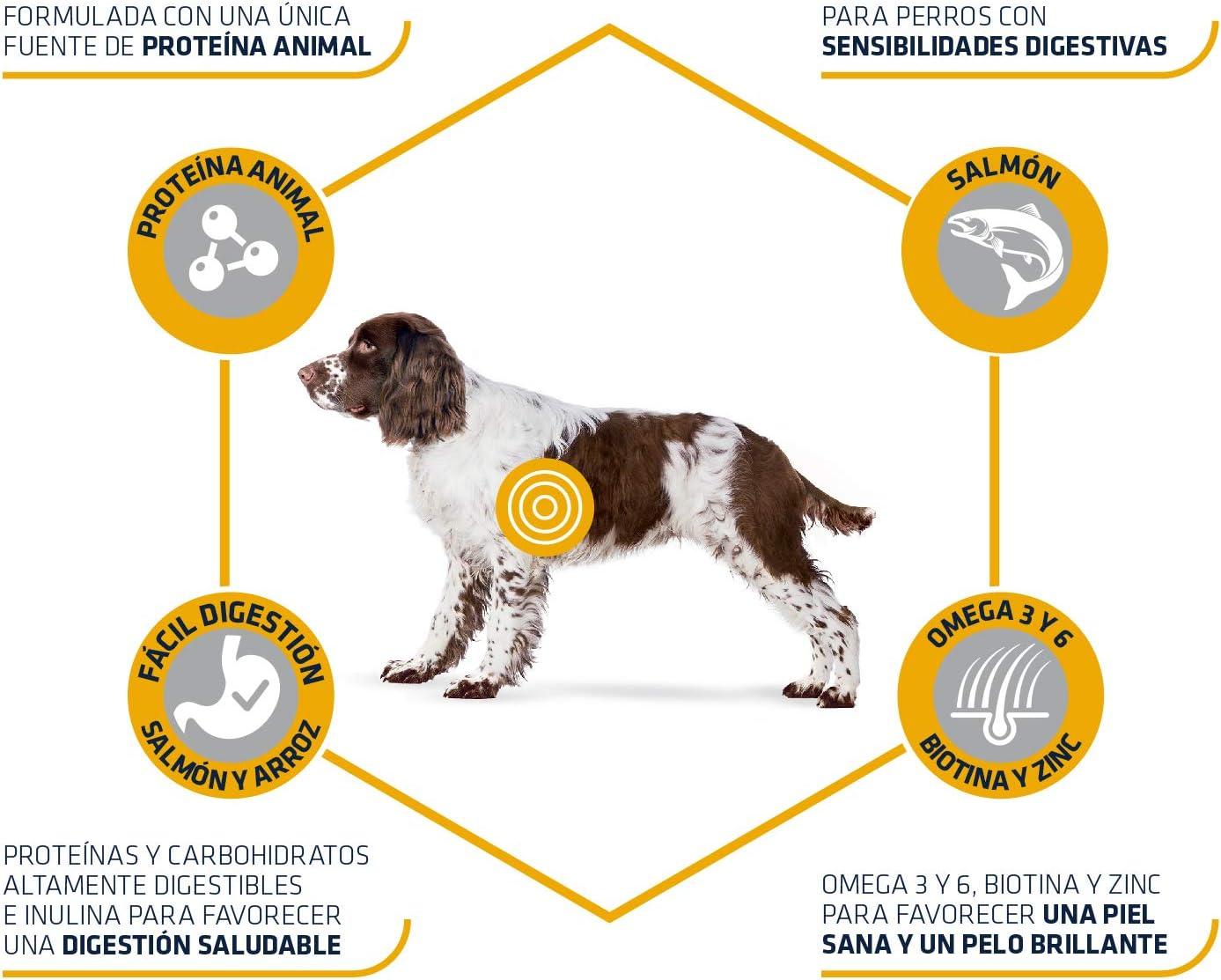 ADVANCE Sensitive Medium/Maxi - Pienso Para Perros Adultos De Razas Medianas y Grandes Con Salmón - 3 kg
