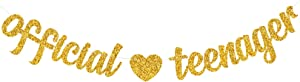 Yvokii Gold Glitter Official Teenager Banner 13th Birthday Decorations Boys Girls Thirteen Years Old Birthday Party Sign Decor