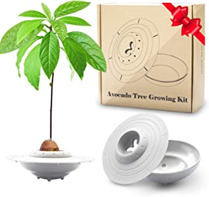 GORNORVA Avocado Tree Growing Kit, UFO Avocado Planting Germinator Bowl with Pot and Plant Instructions, Christmas Gift for Women Friends Grow Your Own AvocadoTree (Avocados & Plants NOT Included)