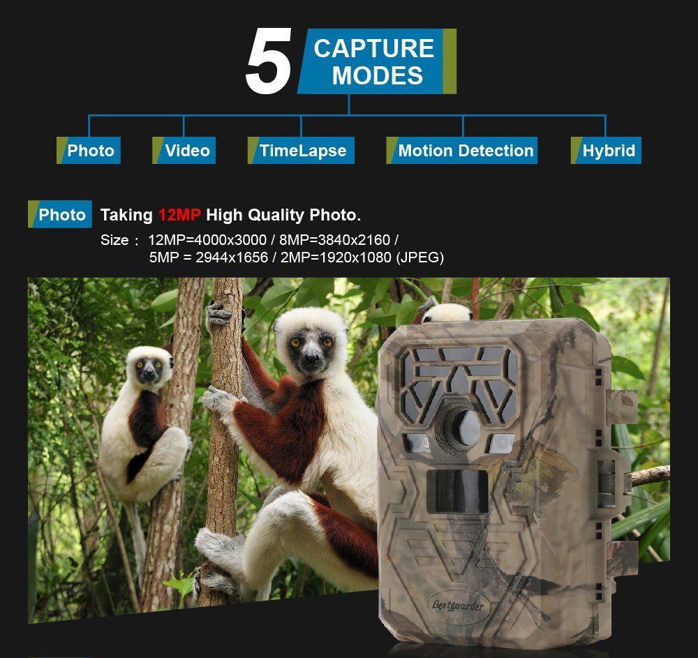 Trail Camera Night Vision Game Camera Waterproof IR LEDs Takes HD 12mp Image 1080p Video from 75feet Distance with 2.0'' LCD Screen for Hunting&Scouting / Security & Surveillance / Wildwife Observation by Bestguarder (Image #3)