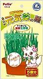 ペティオ (Petio) ネコの元気草の種 15g×5包入X3個セット