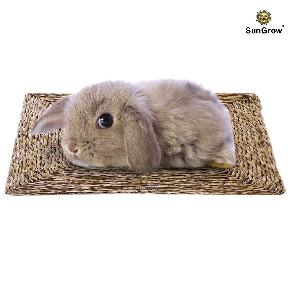 SunGrow Natural Seagrass Mat - Safe & Edible for, Hamsters, Rabbits, Parrot: Water Resistant Bed & Non-Toxic Toy