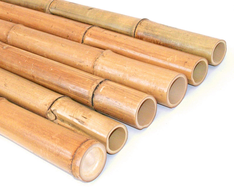 Moso Bambus gebleicht Bambusrohr gelb Durch 4,8-6cm Länge 150cm