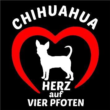 Chihuahua Hunde Auto Aufkleber Chi Sticker Schiwawa Herz Auf