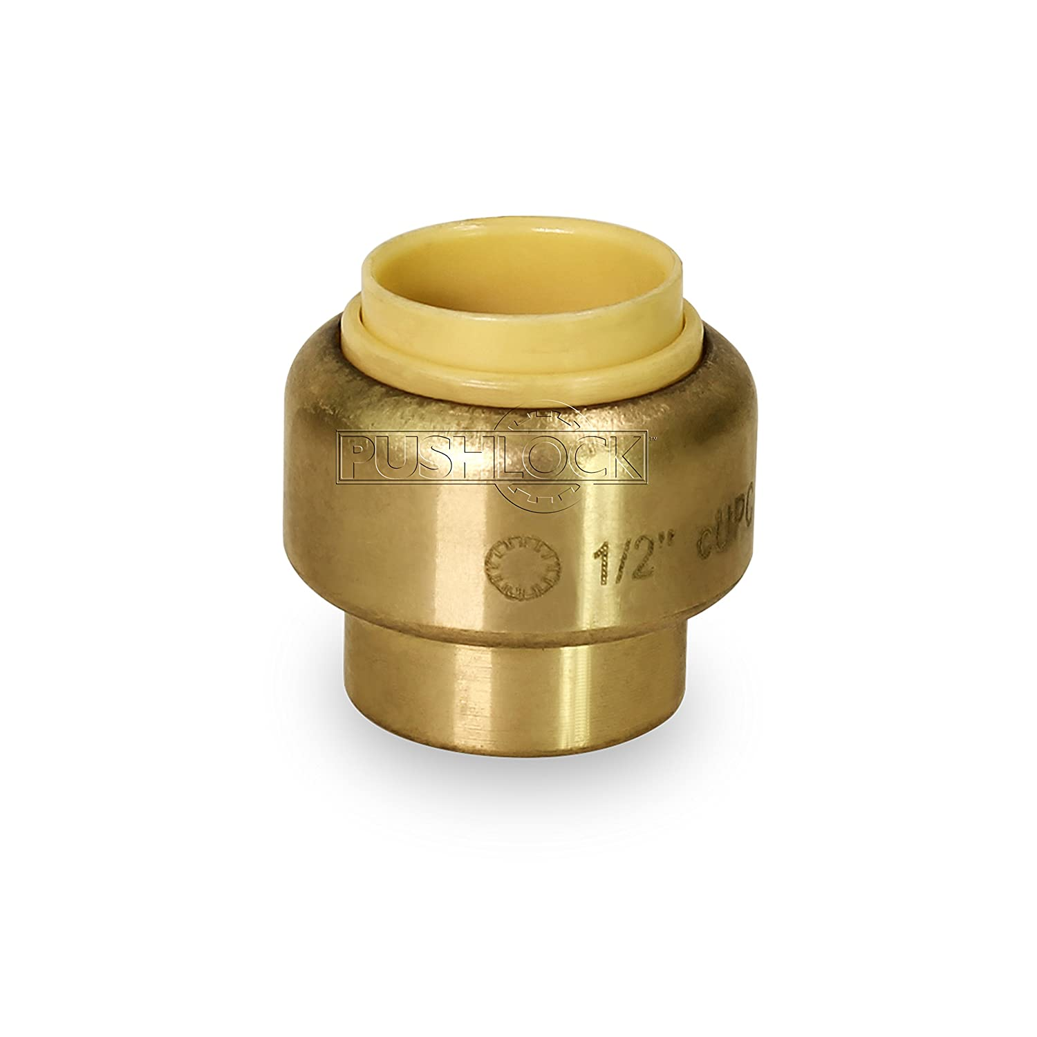 1//2 Inch Brass Pack of 5 Everflow CPVC Pushlock UPSE12-5 Plug End Cap Pipe Fitting Push to Connect Pex Copper
