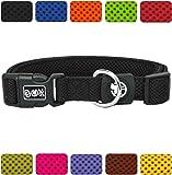 DDOXX Hundehalsband Air Mesh | Hundehalsband reflektierend Air Mesh | für große, mittelgroße, mittlere & Kleine Hunde Größen | Hundeleine & Hundegeschirr separat erhältlich |