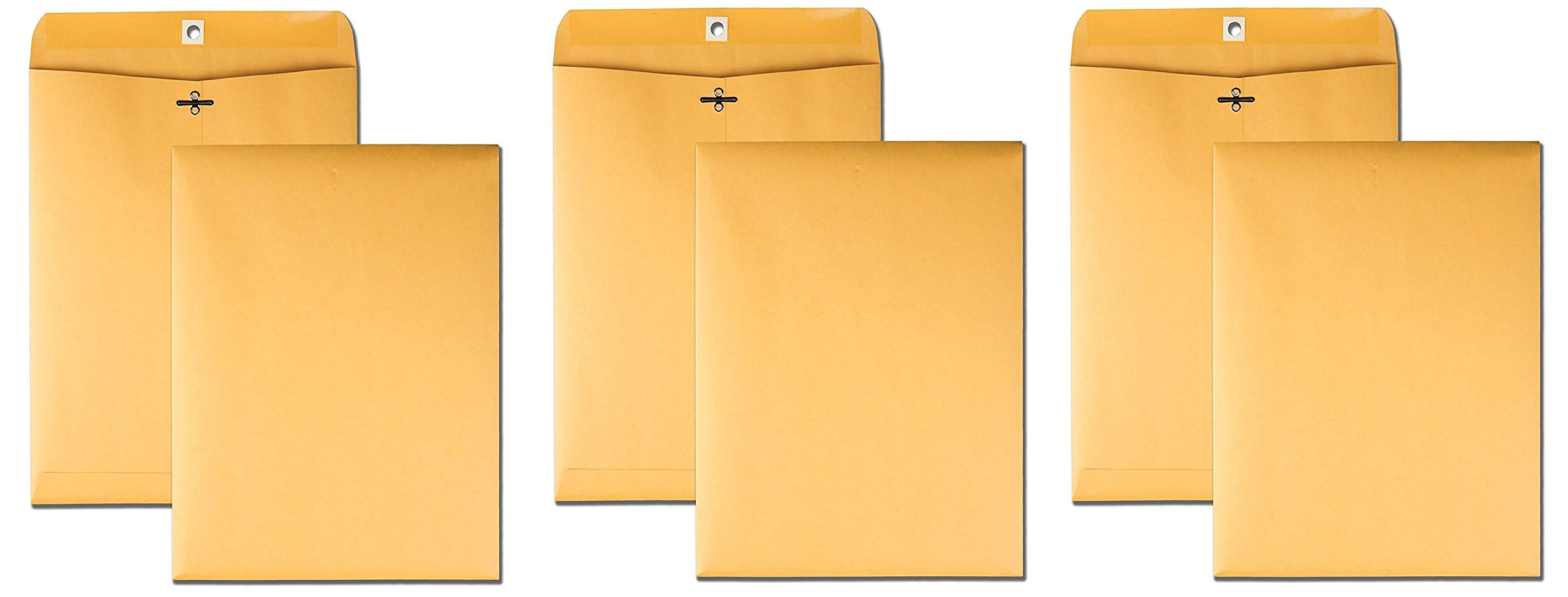 Quality Park 9 x 12 Clasp Envelopes with Deeply Gummed Flaps, Great for Filing, Storing or Mailing Documents, 28 lb Brown Kraft, 100 per Box (37890) (1000 Envelopes)