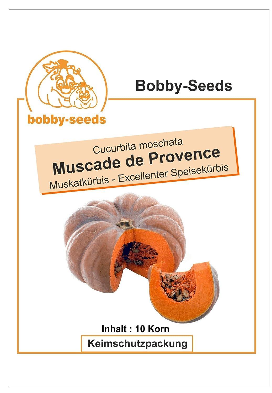 Bobby-Seeds K/ürbissamen Muscade de Provence Portion