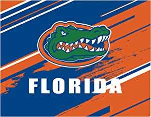 Diamond Painting Kits University Logo for DIY 5D Diamond Art for Home Wall Decor Full Drill and Gift 12'' × 16'' (Florida Gators)