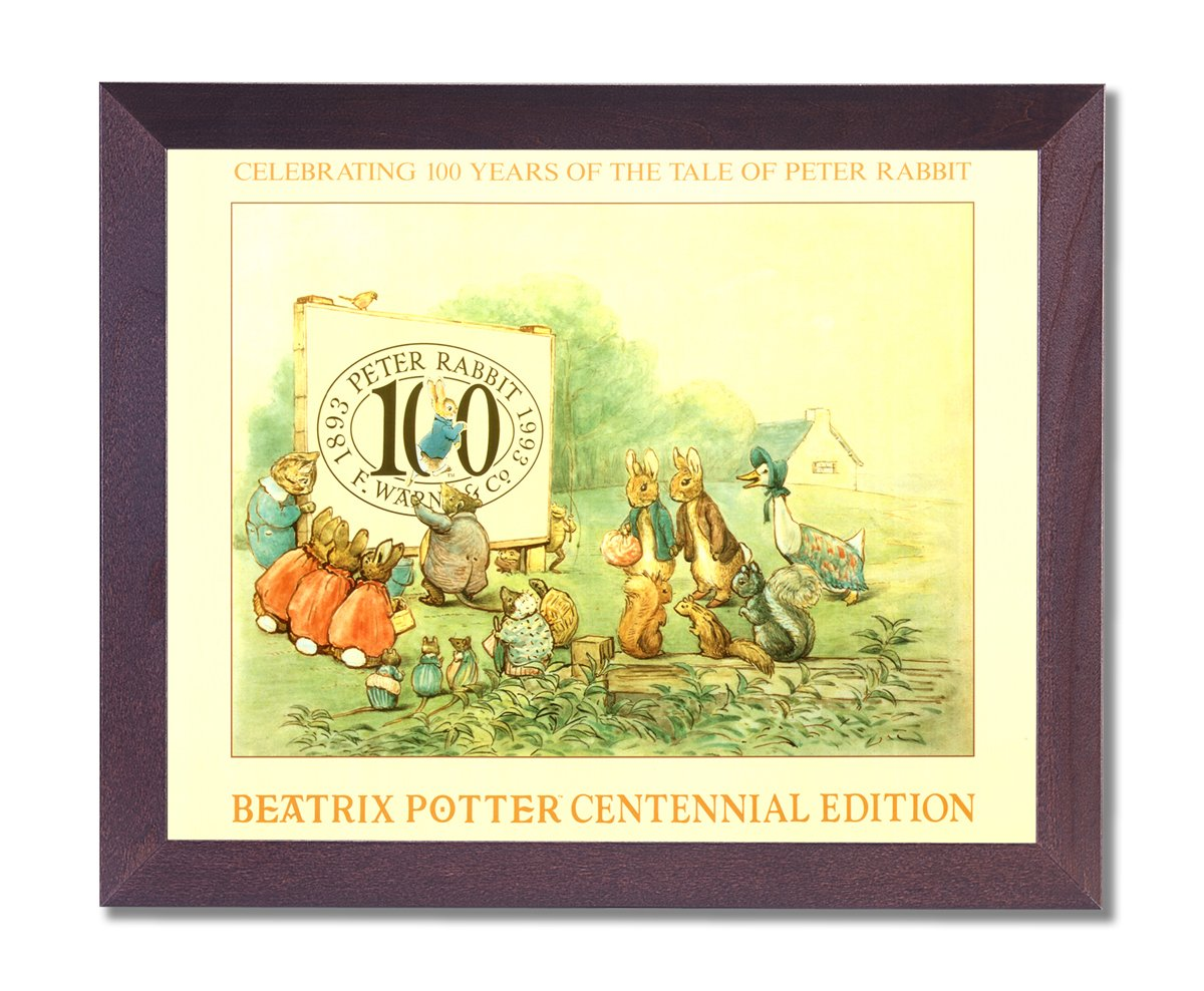Amazon.com: Beatrix Potter Peter Rabbit Centennial Edition Kids Room ...