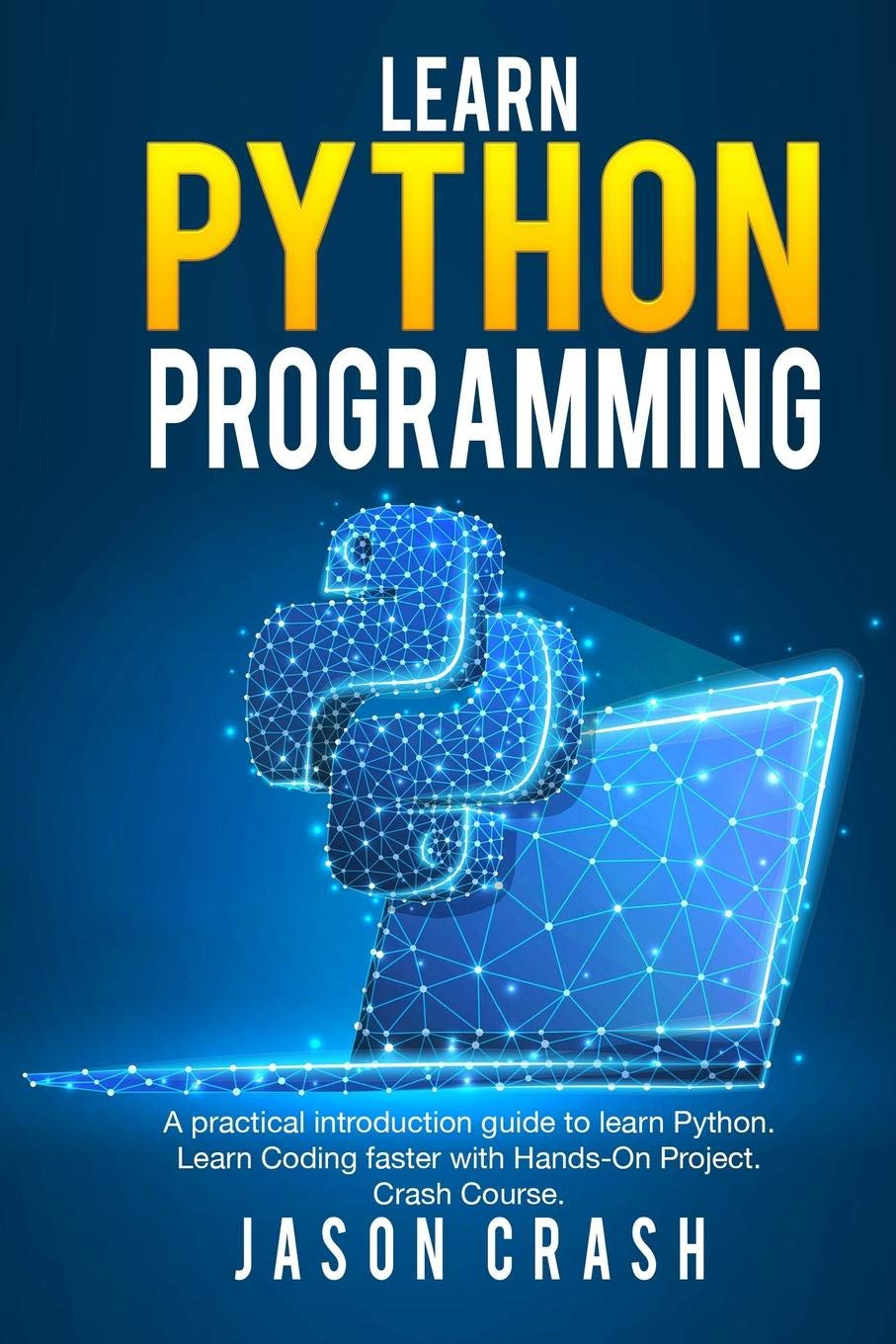 Learn Python Programming Introduction Hands product image