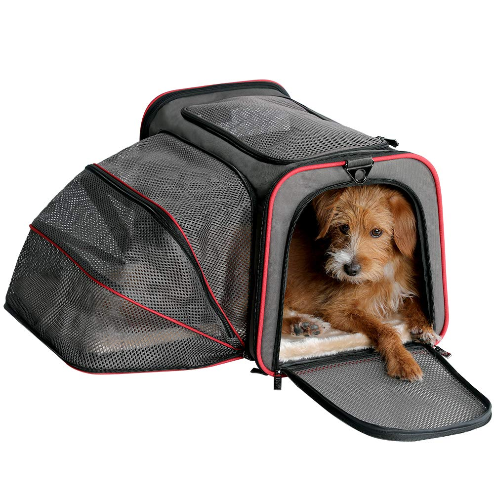 Petsfit 19''x12''x12'' Expandable Foldable Washable Travel Carrier, Not All Airline-Approved Pet Carrier Soft-Sided by Petsfit