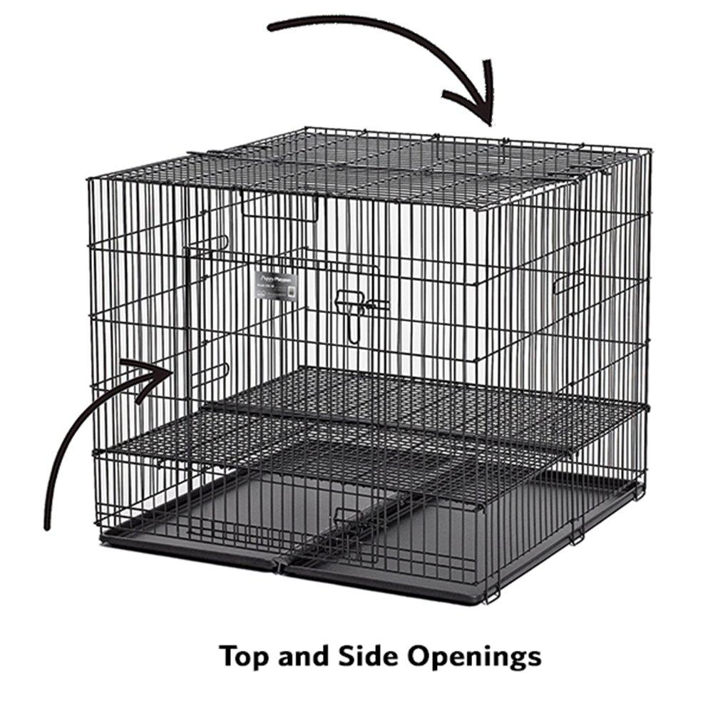 "Amazon.com : MidWest Puppy Playpen with 1 Inch Mesh Floor Grid, 36""L (Medium Model 236-10) : Pet Supplies"