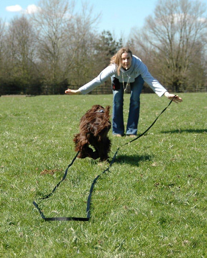 COA Dog Whistle