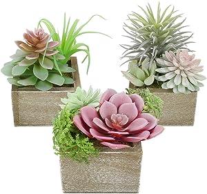 Mingfuxin Artificial Succulents Plants, Mini Assorted Green Fake Faux Succulent Plants Pots Potted for Home Office Living Room Table Desk Plants Decor, Set of 3