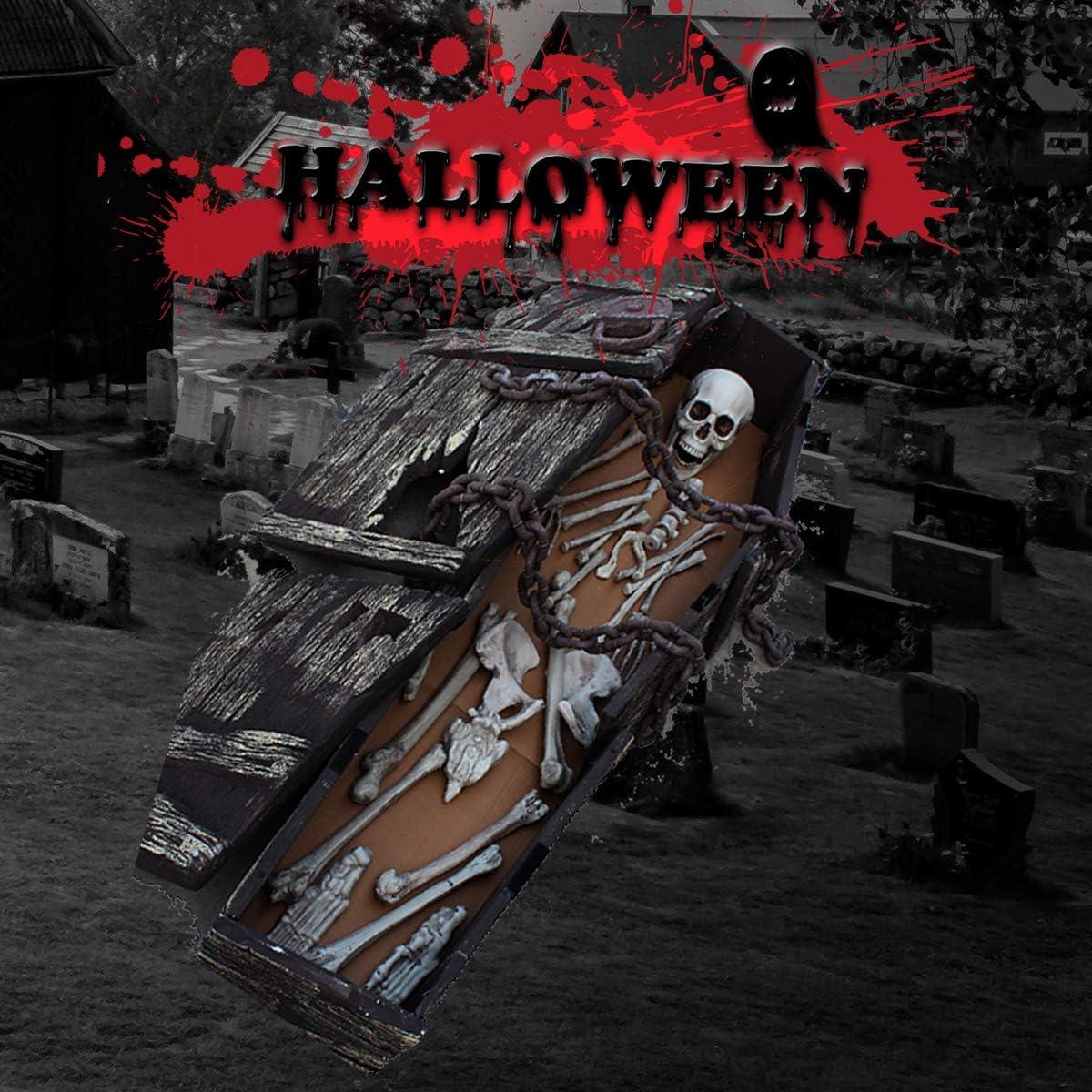 XONOR 28 os de Squelette et cr/âne pour la d/écoration dhalloween ou la d/écoration dun cimeti/ère fantasmagorique