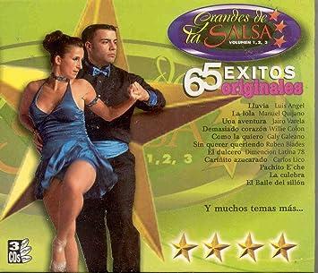 LUIS ANGEL WILLIE COLON GALY GALEANO RUBEN BLADES CARLOS LICO LOS VIRTUOSOS GRPO NICHE LOS TITANES DE LA SALSA Y MAS - GRANDES DE LA SALSA 65 EXITOS VOL 1 ...