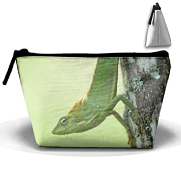 Amazon.com : Multifunction Colorful Travel Toiletry Bags Makeup Bags Wash Organizer - Animal Chameleon Lizard Green : Beauty