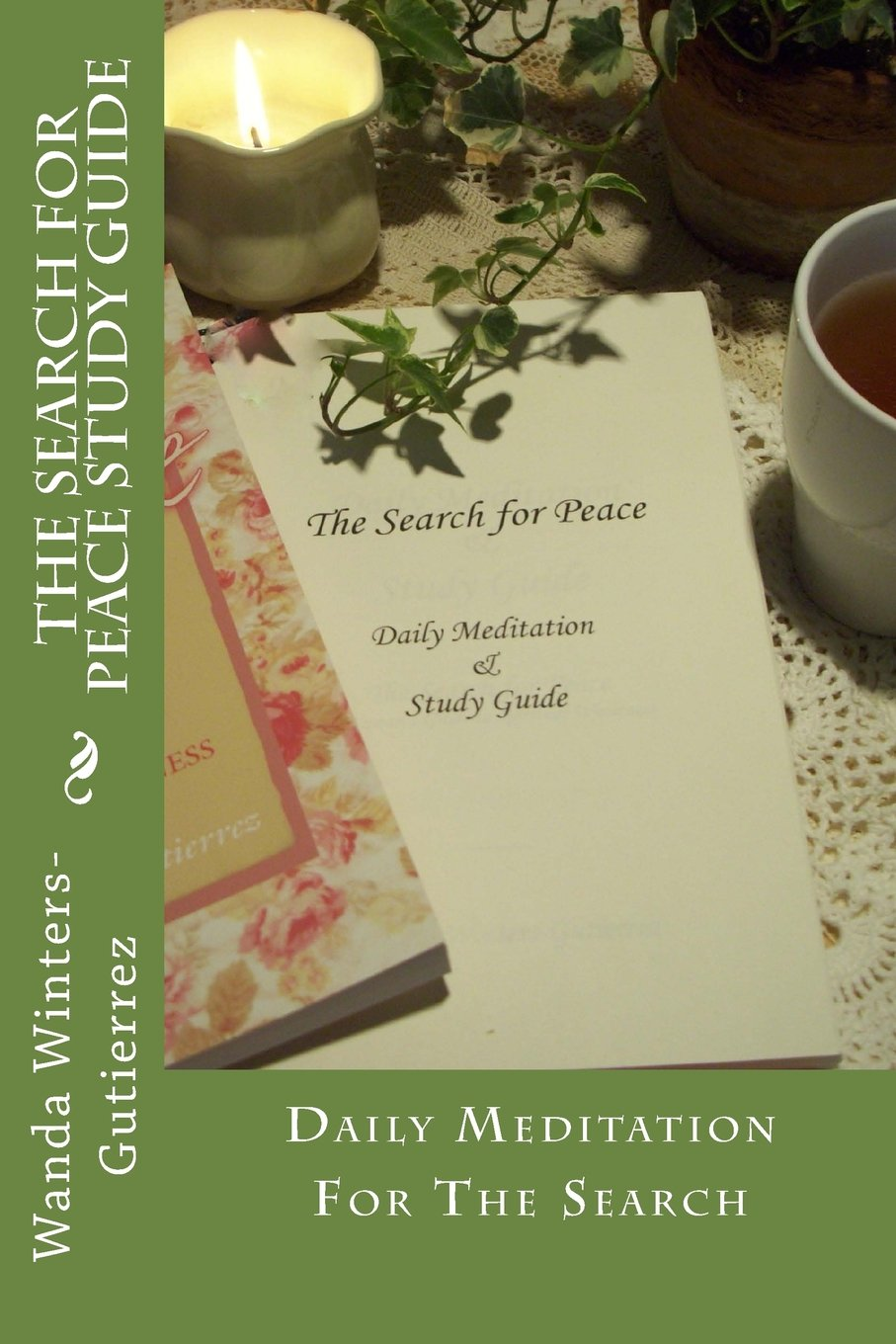 The Search for Peace Study Guide ebook