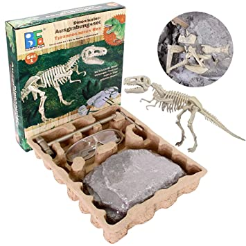Dating dinosaurier fossil