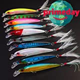 10Pcs Hard Plastic 3D Eyes Minnow Fishing Lures Bass CrankBait Tackle Hard Lure with Classic Treble Fishing Hooks and Flasher Fish Skin Feathers