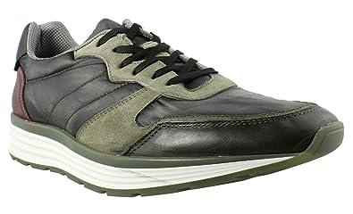ed0b3c6446d Steve Madden Men s Heroe Green Sneaker 10 D ...
