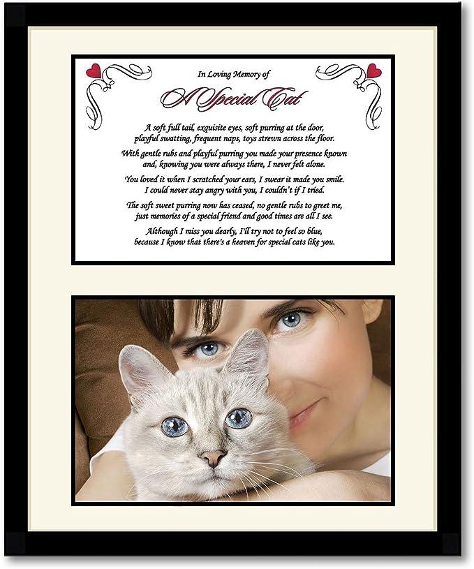 loss Cat Horse Personalised Rabbit Fur keepsake Dog Bereavement Pet Memorial gift Loving memory Urn Guinea Pig memory