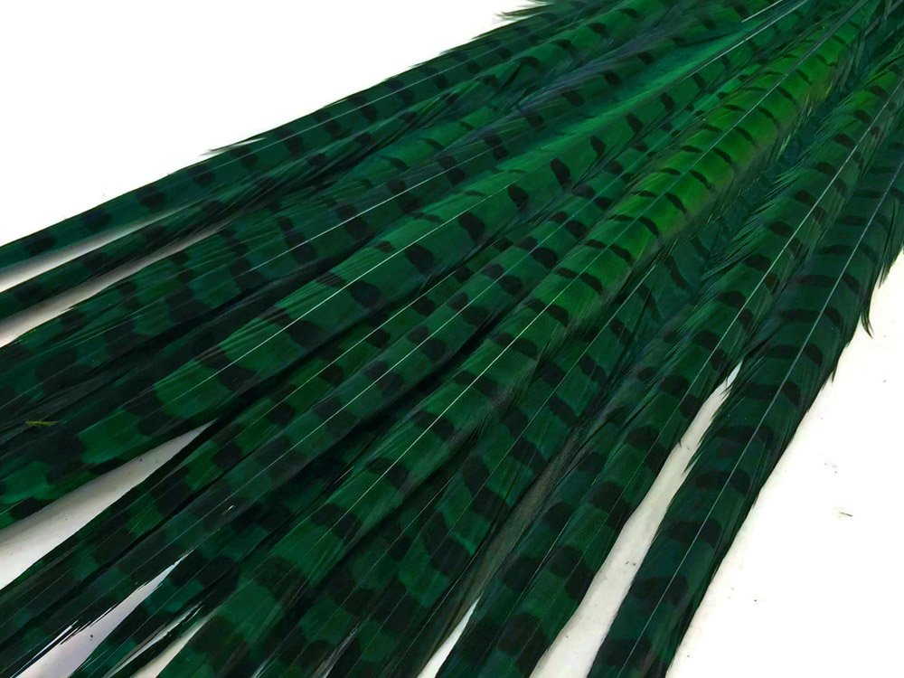 50 Pieces - 20-22'' Peacock Green Ringneck Pheasant Tail Wholesale Feathers,