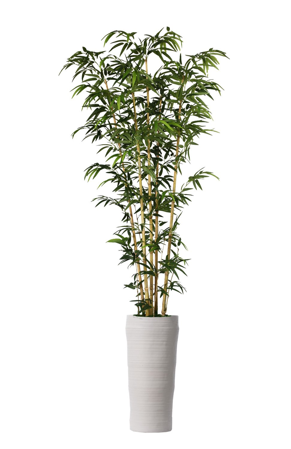 Laura Ashley VHX116218 93'' Bamboo Tree in Natural Poles in Planter Tree