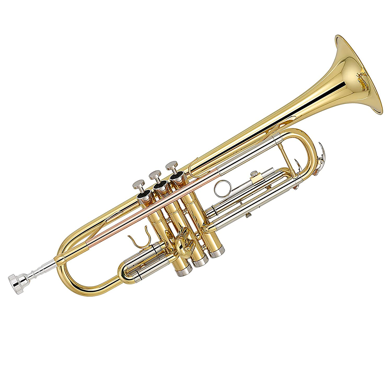 Trompeta dorada  B Flat Bb 3000 C funda y accesorios Kaizer
