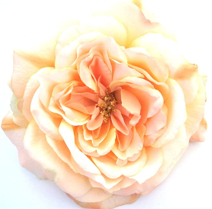 Amazon full 55 peach rose silk flower brooch pin clothing full 55quot peach rose silk flower brooch pin mightylinksfo