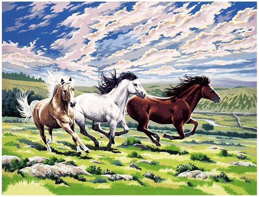 Pinturas para Lienzo Pinturas Oleo - DIY Regalos Kits Manualidades Pinturas con Numeros para Adultos - Caballos Corriendo En El Prado