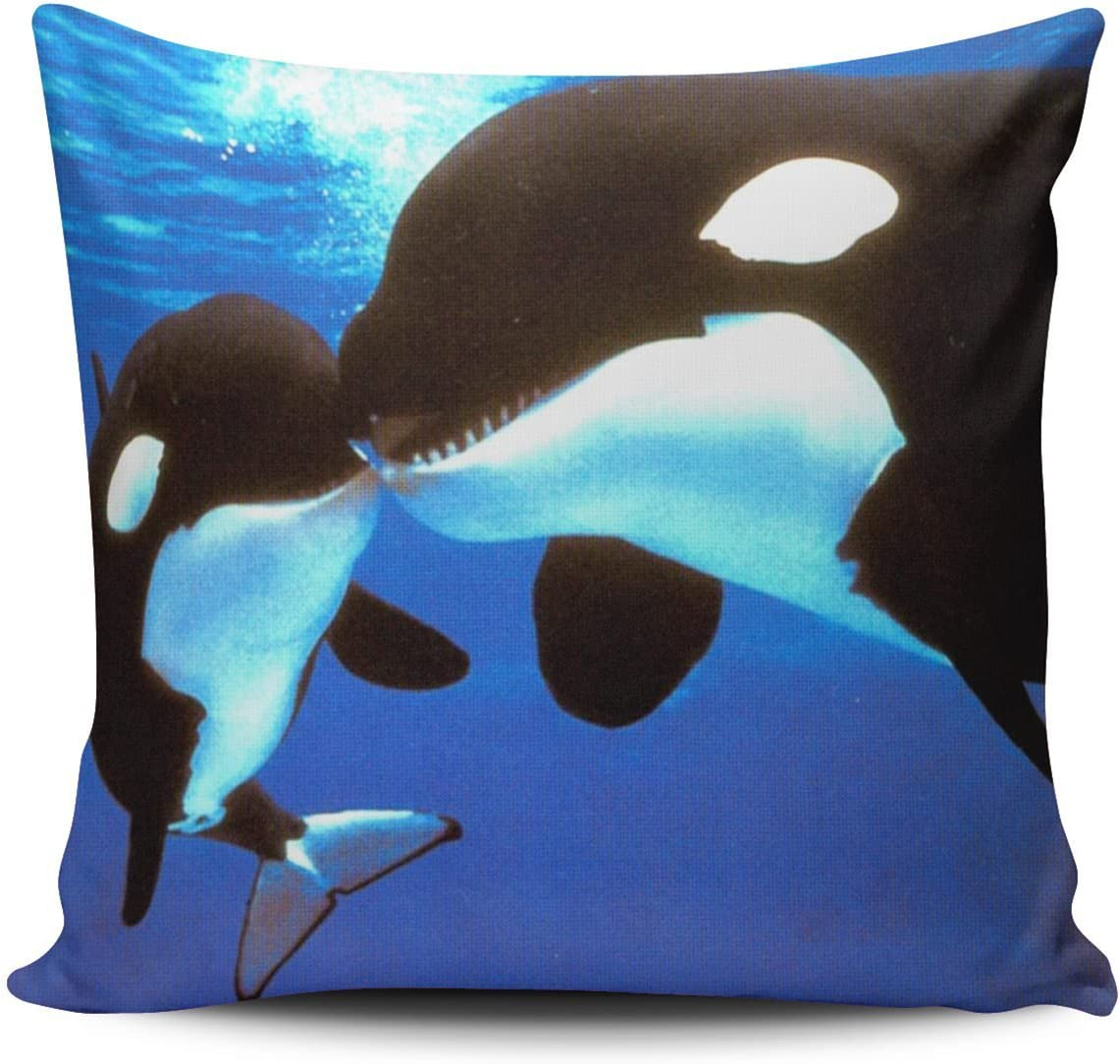 Hoooottle Custom Luxury Funny Lover Couples Black Killer Whale Orca Kiss Jaws Square Pillowcase Zippered One Side Printed 20x20 Inches Throw Pillow Case Cushion Cover Home Kitchen
