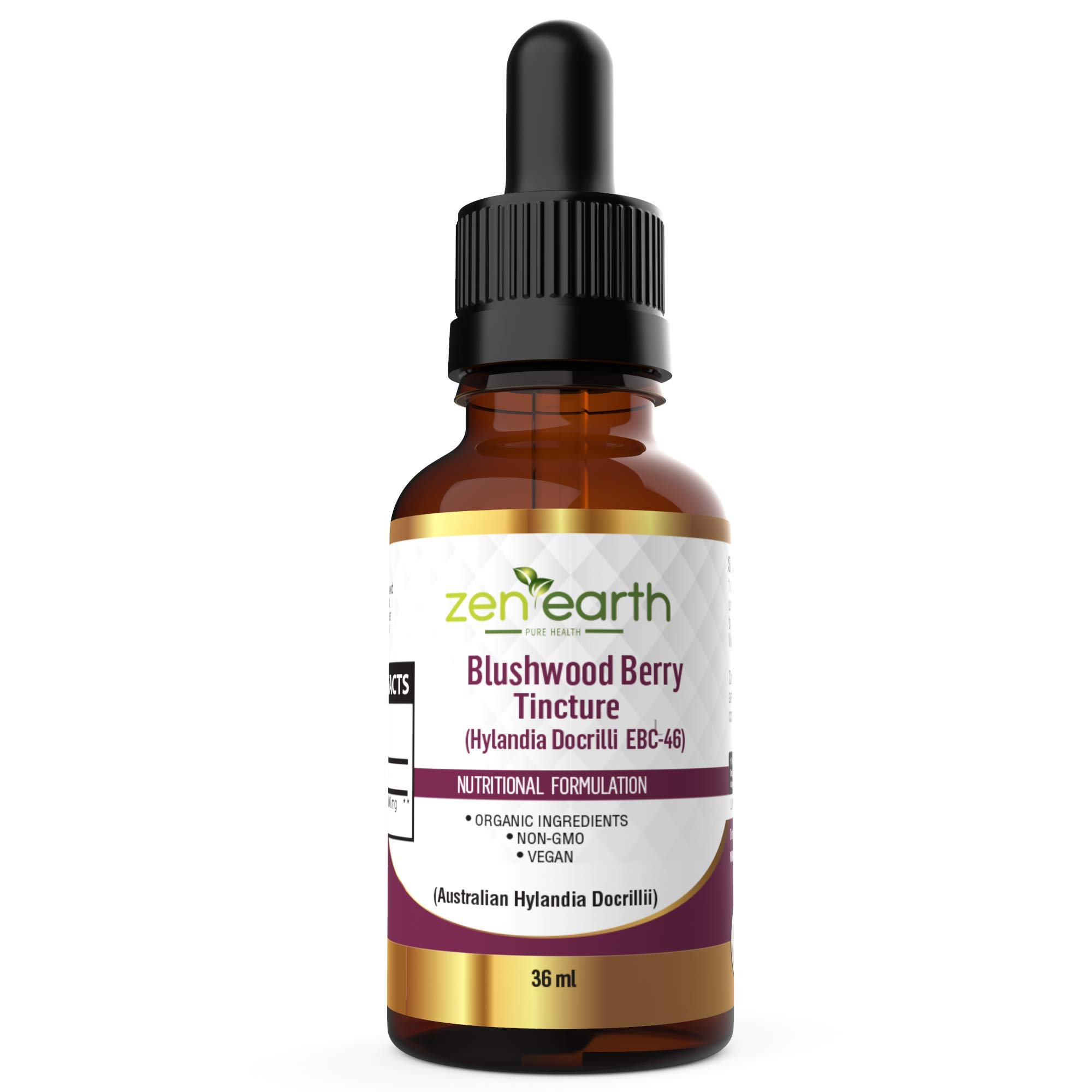 Blushwood Berry Tincture 36 ml Hylandia Dockrillii from Australia
