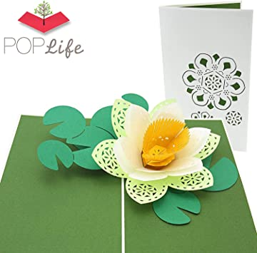 Amazon.com: Poplife flor de loto 3d Pop Up Tarjeta de ...