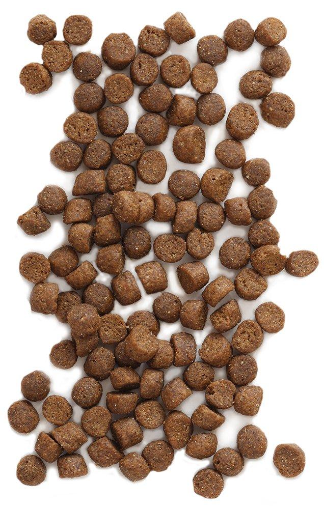 Earthborn Grain Free Primitive Feline 14 lbs by Earthborn Holistic (Image #3)