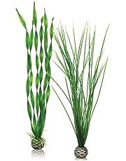 Biorb Grandes Plantes