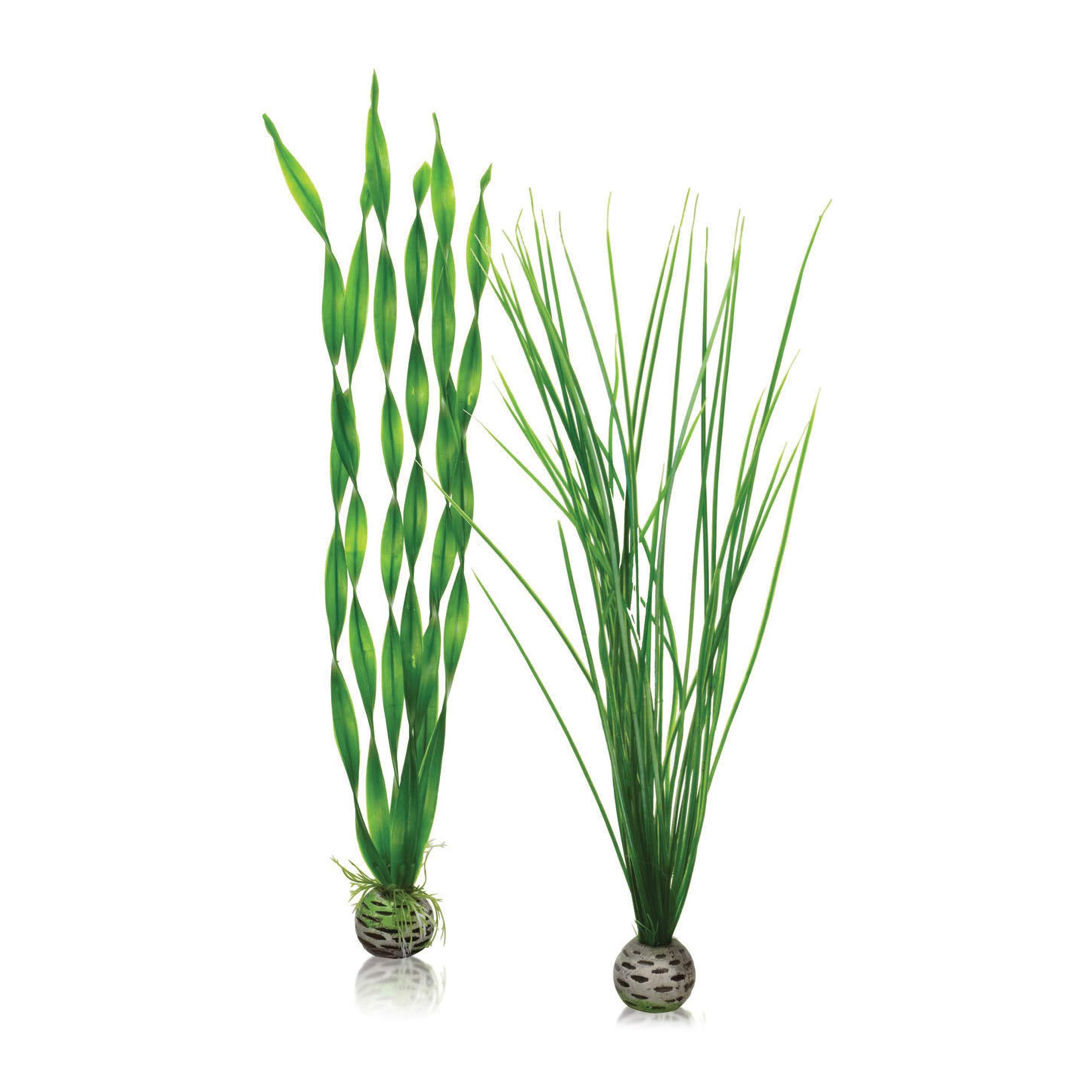 biOrb Easy Plant, Tall, Pack of 2, Green