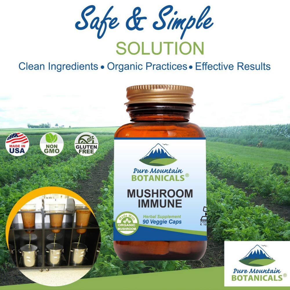 Mushroom Immune – 90 Kosher Capsules with 14 Powerful Mycelium Including Certified Organic Maitake – Reishi – Turkey Tail – Chaga – Cordyceps – Shiitake – Lions Mane