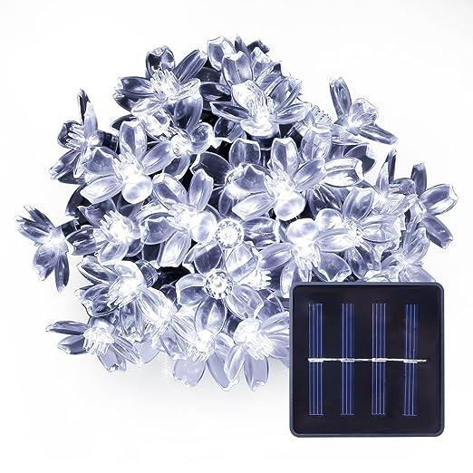 171 opinioni per LE 5M 50 LEDs Catene luminose a LED,