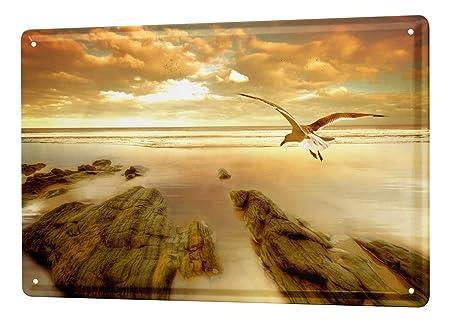Cartel Letrero de Chapa XXL Feng Shui nubes gaviota libertad ...