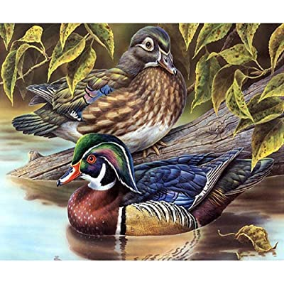 Q&K Jigsaw Puzzles 500 Piece for Adults Wooden Wild Duck Portable Decompression Puzzle Game Toys Logic Memory Challenge Thanksgiving Gift: Toys & Games