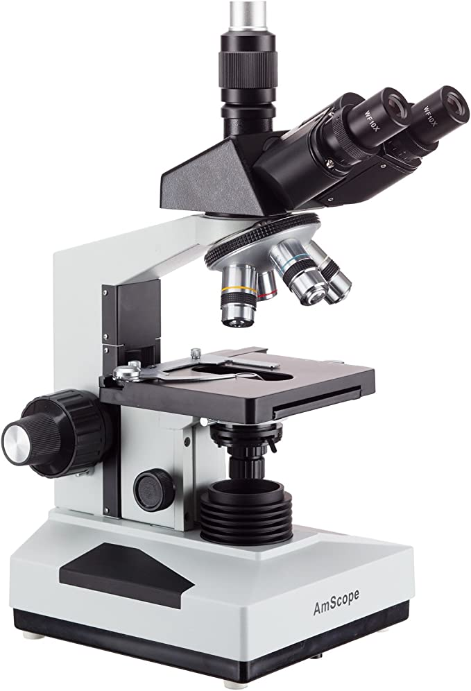 40X-2000X Magnification Abbe Condenser Double-Layer Mechanical Stage Anti-Mold Brightfield WF10x and WF20x Eyepieces Halogen Illumination Sliding Head High-Resolution Optics Includes 50 Blank S AmScope B490B-BS-50P-S Compound Binocular Microscope
