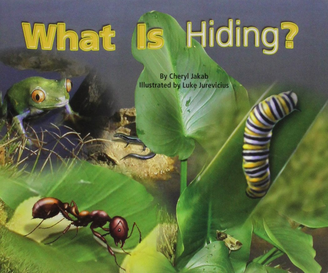 Read Online Rigby Flying Colors: Individual Student Edition Red What is Hiding? PDF