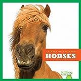 Horses (Bullfrog Books: Animals on the Farm)