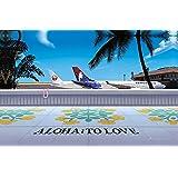 ハワイアン雑貨 インテリア/キャンバス パネル絵(Honolulu Airport) 【ハワイ雑貨】【お土産】