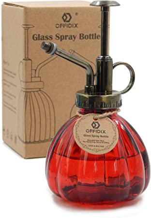 Amazon.com: OFFIDIX Botella de vidrio transparente para ...