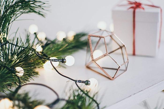 Christmas Succulent Gift.Amazon Com Free Gift Box Christmas Gift Terrarium Xmas Box